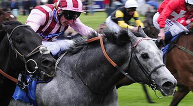The Clive Cox-trained Lethal Force, centre, won the Diamond Jubilee Stakes under Adam Kirby