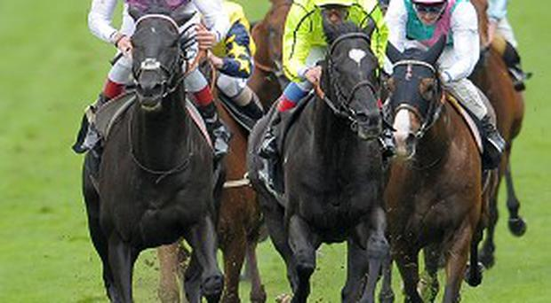 The ill-fated Thomas Chippendale (left) holds off Dandino