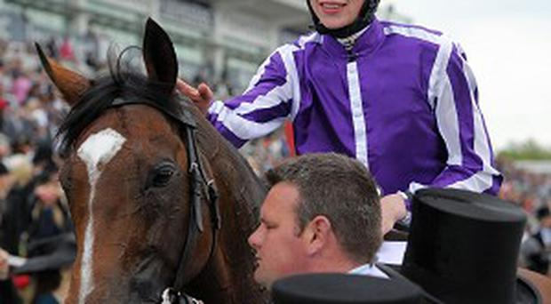 St Nicholas Abbey suffered a fractured leg on Tuesday