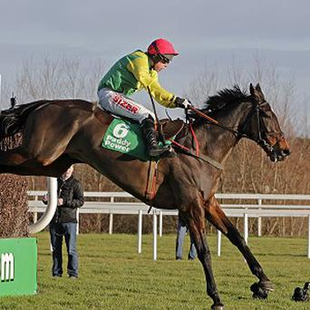 Sizing Europe heads the entries for the PWC Champion Chase