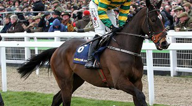 Jezki, pictured, could meet Rule The World at Fairyhouse on Sunday