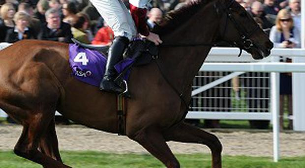First Lieutenant is set for the Lexus Chase