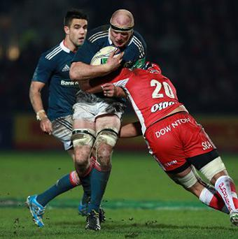 Captain Paul O'Connell is not worried about any British and Irish Lions tour fatigue for Ireland in the RBS 6 Nations.