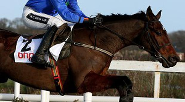 Hurricane Fly clears the last first time around on the way to winning the BHP Insurance Irish Champion Hurdle