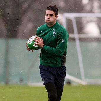 Conor Murray, pictured, does not expect injury to Eoin Reddan to clear the way for him at scrum-half