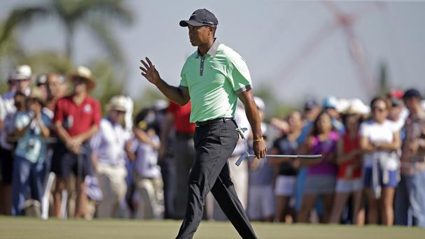 Tiger Woods has moved into contention at Doral (AP)
