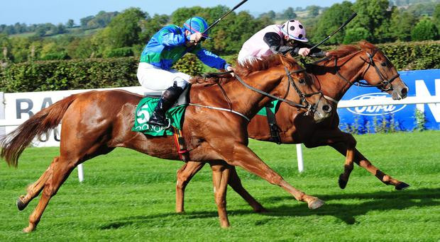 Shipyard will not run in the Irish Lincolnshire if the ground is very soft