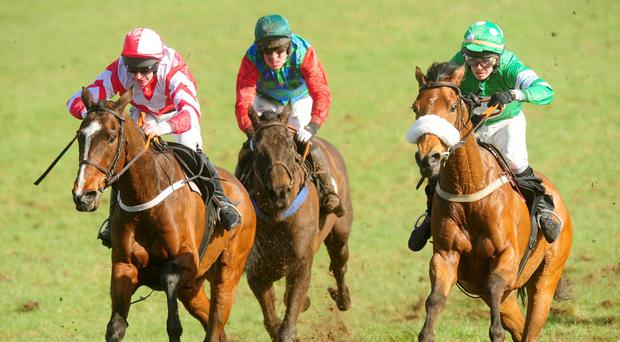 Coole Avenue landed the Cashel Beginners Chase at Thurles