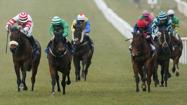 Srucahan, centre, won the Trinity Racing Society Handicap last year