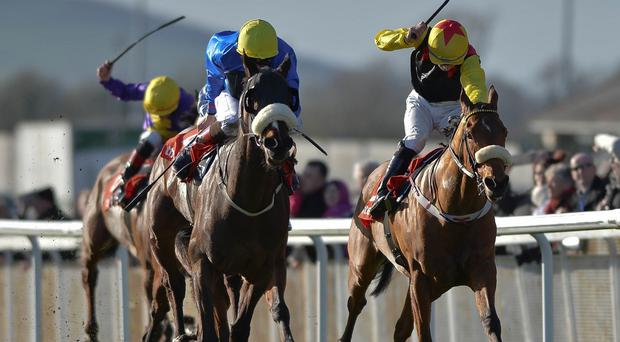 Stuccodor, left, got up to win the www.thetote.com Irish Lincolnshire.