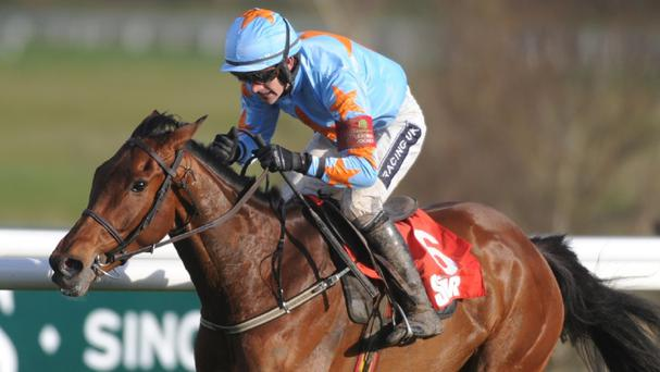 Un De Sceaux is unbeaten in all his seven races under Rules to date