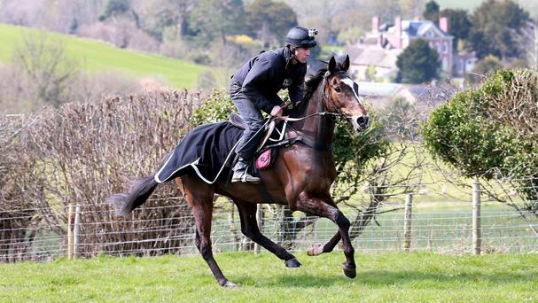 Monbeg Dude will be ridden by Paul Carberry in the Grand National
