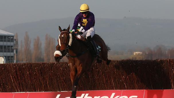 Spring Heeled is entered in the bet365 Gold Cup