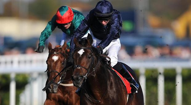 Kingsbarns, right, will run in the Heritage Stakes on Wednesday