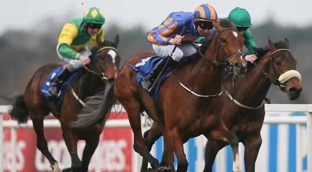 Bracelet ridden by Joseph O'Brien, centre, wins The Leopardstown 1,000 Guineas Trial Stakes