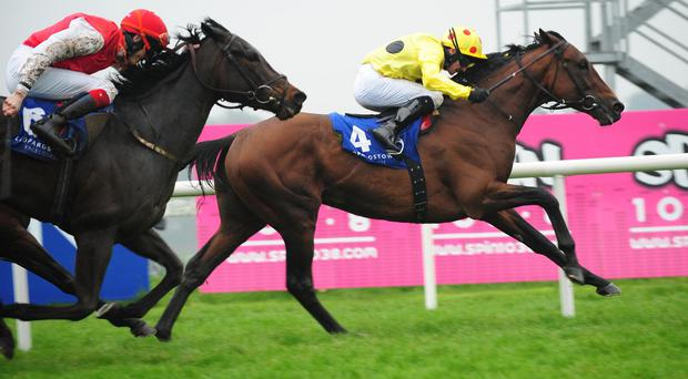 Qewy and Declan McDonogh win The Heritage Stakes