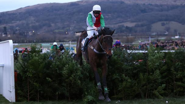 Big Shu turns his attention to Punchestown