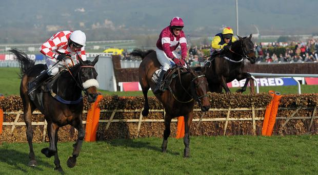 Very Wood, centre, is likely to take his chance in the Irish Daily Mirror Novice Hurdle