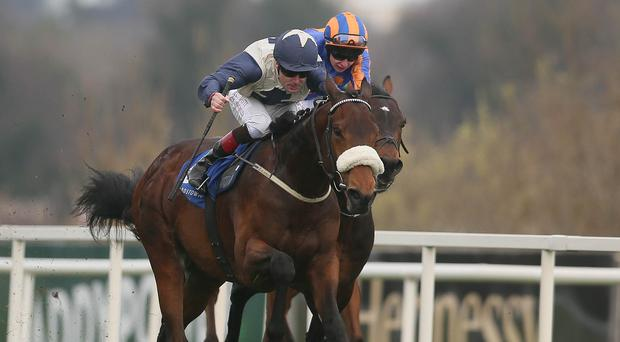 Fascinating Rock, left, came out on top in the the P.W. McGrath Memorial Ballysax Stakes