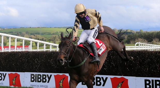 Boston Bob ridden by Ruby Walsh goes on to win the Bibby Financial Services Ireland Punchestown Gold Cup