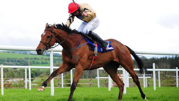 Shaneshill is clear in the Grade One bumper