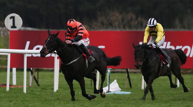 Jetson held on to beat Quevega at Punchestown