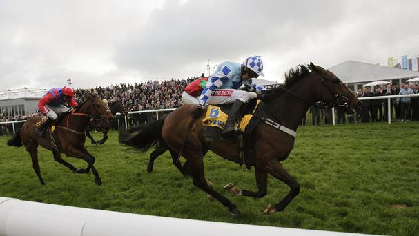 God's Own came with a late run to win the Ryanair Novice Chase
