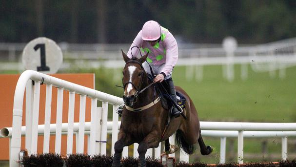 Vautour wins The Tattersalls Ireland Champion Novice Hurdle at Punchestown
