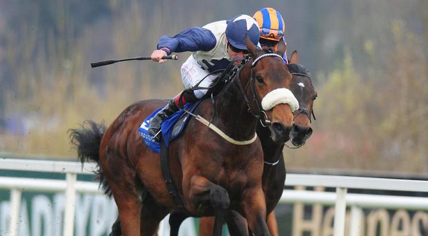 Fascinating Rock was awarded the Derrinstown Stud Derby Trial