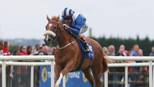 Tarfasha will represent Dermot Weld in the Irish Stallion Farms E.B.F. Blue Wind Stakes.