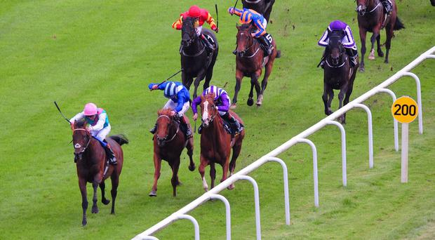 Kingman sweeps to Guineas glory