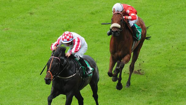 Slade Power impresses in beating Maarek
