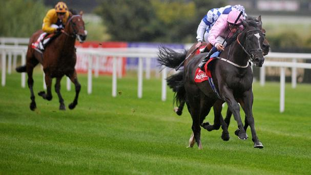 The Fugue winning last year's Irish Champion Stakes at Leopardstown