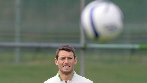 Wes Hoolahan has used the Republic of Ireland's end-of-season fixtures to soothe his relegation heartache