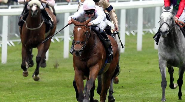 Dandy Boy winning the 2012 Wokingham