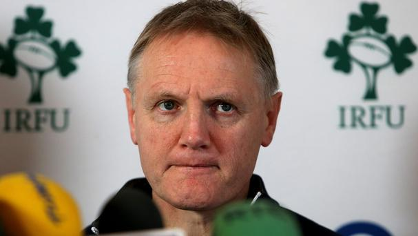 Joe Schmidt believes Ireland have plenty of work to do after beating Argentina