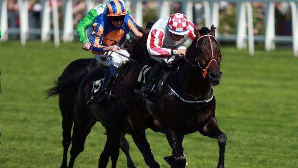 Slade Power and Due Diligence get close in the dying strides