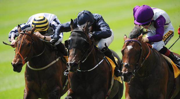 Fountain Of Youth just gets the better of Extortionist (right)