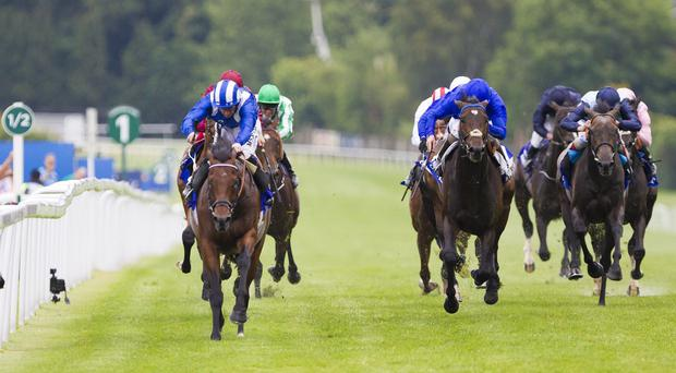 Mukhadram (left) holds Trading Leather in the Eclipse