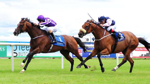 Darwin scores at Fairyhouse