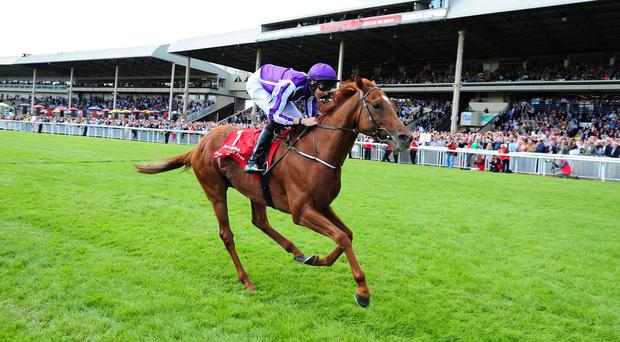 Australia won the Irish Derby back in June