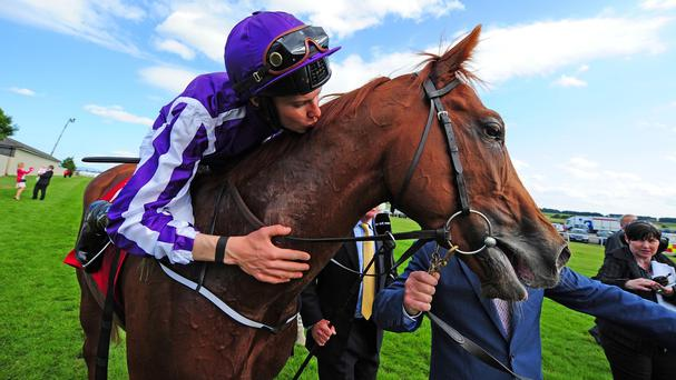 Aidan O'Brien pitches Australia into all-aged company for the first time on the Knavesmire on Wednesday