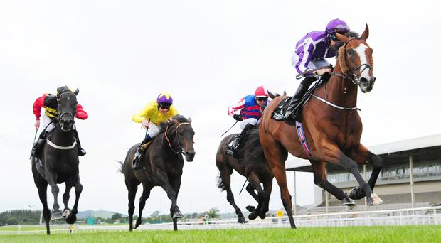 Leading Light forges clear under Joseph O'Brien