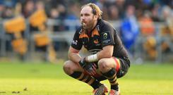 Wasps' Andy Goode sinks to his knees after his drop-goal attempt in the dying seconds goes wide