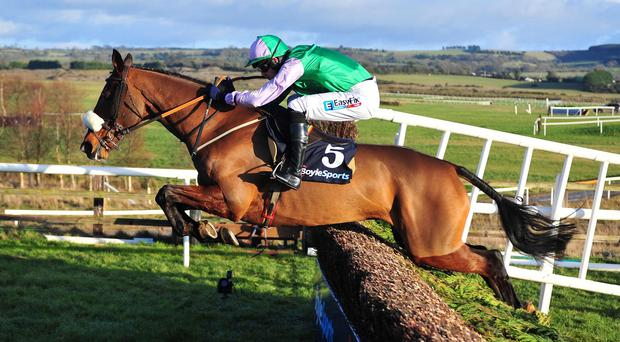 Hidden Cyclone jumps the last to win the Tied Cottage Chase