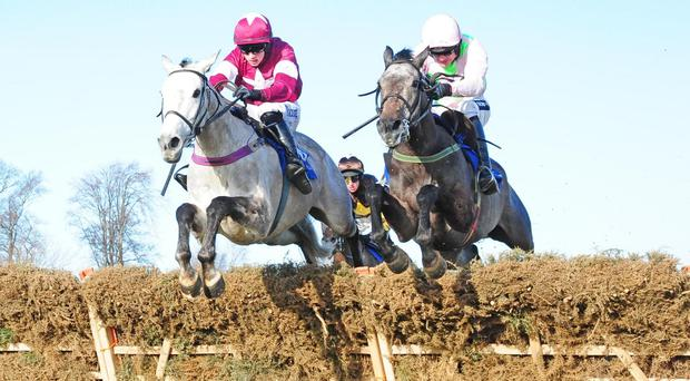 Petite Parisienne (left) serves it up to Kalkir at Leopardstown