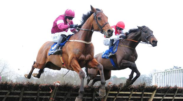 Roi Des Francs beats Fine Article (Right) to win the Surehaul Mercedez-Benz Novice Hurdle at Clonmel