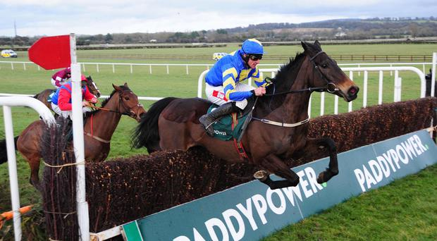 Mallowney has the race sewn up at the final fence