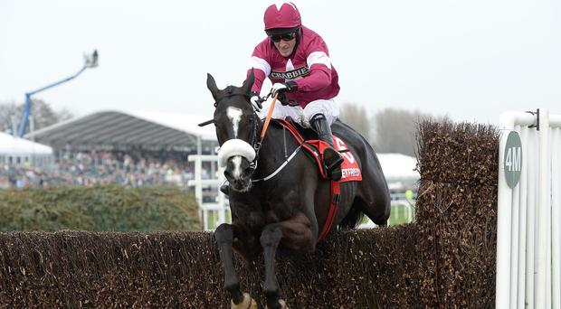 Don Cossack and Tony McCoy are clear at the final fence