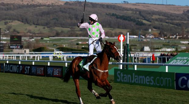Ruby Walsh celebrates his victory on Faugheen in the Champion Hurdle at Cheltenham